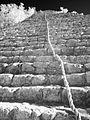 Rope & Stairs - Nohoch Mul Pyramid (8408077673).jpg