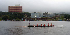 Rowers at the Regatta.jpg