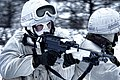 Royal Marines During Winter Training in Norway MOD 45152252.jpg