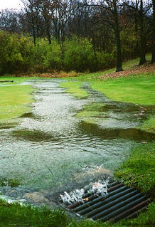 Surface runoff The flow of excess stormwater, meltwater, or water from other sources over the Earths surface