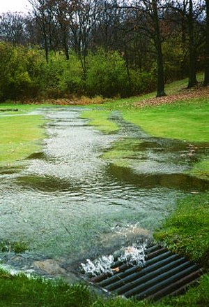 Surface runoff - Runoff flowing into a stormwater drain