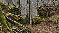 Süntel NSG Hohenstein 19.jpg