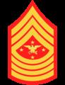 SEAC USMC Concept Rank Insignia.png