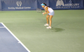 SORANA PIC FOR WIKIPEDIA 2.png