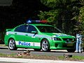 SU 215 Commodore SS traffic stop - Flickr - Highway Patrol Images.jpg