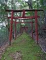 Sae inari jinjya shrine , 狭上(さえ)稲荷神社 - panoramio (8).jpg