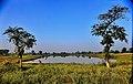 Sagrahawa Lake Kapilvastu Lumbini Zone Nepal Rajesh Dhungana.jpg