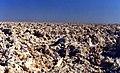 Salar de Atacama, Chile - panoramio.jpg