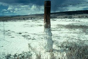 Soil salinity - Visibly salt-affected soils on rangeland in Colorado. Salts dissolved from the soil accumulate at the soil surface and are deposited on the ground and at the base of the fence post.