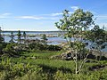 Salt Marsh Trail, Dartmouth, Nova Scotia(30181342668).jpg