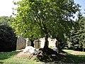 Sancta Maria in Paradyso Kirchenruine3.JPG