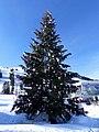 Sapin de Noël 2019 installé à Courchevel 1850.JPG