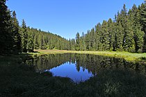 Schwarzsee in Arosa 01.jpg