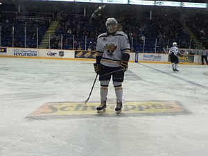 Cape Breton Screaming Eagles - The team returned to the playoffs in 2014.