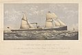 Screw steamer Forest - H. Holt Commander - Morel Brothers and Co owners - Palmers shipbuilding and Iron Compy Builders RMG PY5288.jpg