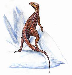 Scutellosaurus1.jpg
