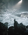 Sea Lion Caves-6.jpg