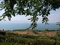 Sea of Galilee (2925955150).jpg