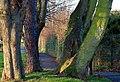Shaftesbury Park, Carrickfergus (3) - geograph.org.uk - 650294.jpg
