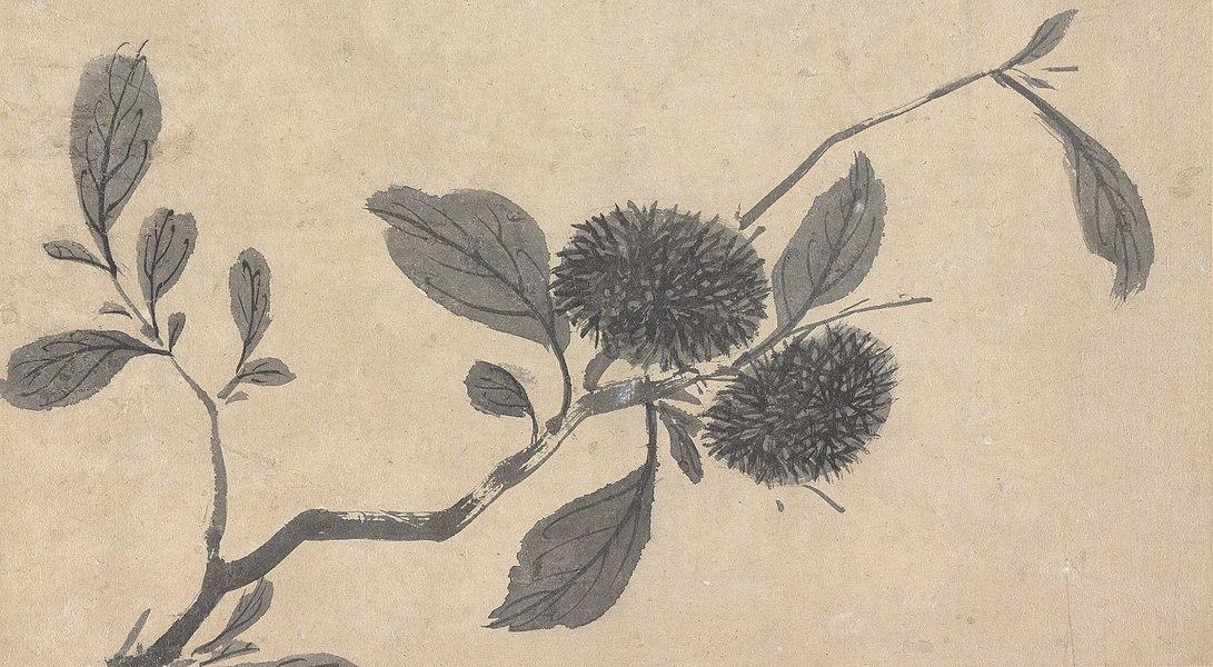shen zhou - image 5