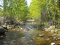 Shingle Creek (British Columbia)1.jpg