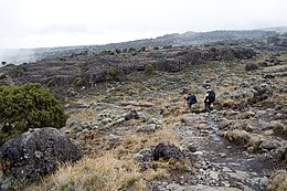 kan koolstof worden gebruikt voor dating lavastromen