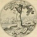 Silenus Alcibiadis, sive, Proteus - vitae humanae ideam, emblemate trifariàm variato, oculis subijciens (1618) (14747855252).jpg