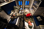 Simulated aircraft accident tests Iceman response 150126-F-QE361-254.jpg