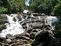 Sinharaja, water fall - panoramio.jpg