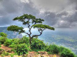 Sithar Kundu View Point 01.jpg