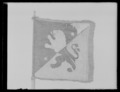 Skvadronstandar Västgöta kavalleri - Livrustkammaren - 70656.tif