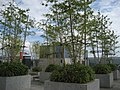 Sky Garden - panoramio.jpg