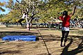 Slacklining in New Farm Park Brisbane Australia.JPG