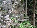 Slovensky raj, Stupacky Pri Zareze, 03.jpg