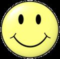 Smiley head happy.png