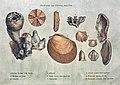 Smith fossils2.jpg