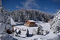 Snow Landscape 27-1-2017-2.jpg
