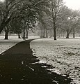 Snowy Park - geograph.org.uk - 695997.jpg