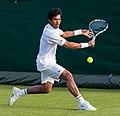 Somdev Devvarman 3, 2015 Wimbledon Qualifying - Diliff.jpg