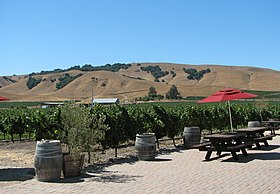 Image illustrative de l'article Sonoma Valley