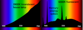 Spectroradiometer - Characteristic spectral power distributions (SPDs) for an incandescent lamp (left) and a fluorescent lamp (right). The horizontal axes are in nanometers and the vertical axes show relative intensity in arbitrary units.