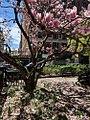 Spring Day, Greenwich Village, New York City.jpg