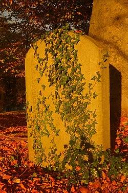St Woolos Churchyard Gravestone.jpg