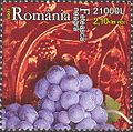 Stamps of Romania, 2005-043.jpg