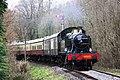 Staverton Woods - 4555 Totnes train.JPG