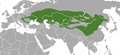 Steppe Polecat area.png
