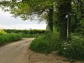 Stour Valley Walk crosses Pivington Lane - geograph.org.uk - 1292608.jpg