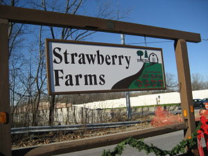 "Example of a neighborhood complex, showing the ""Strawberry Farms"" logo."