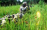 Strike Brigade conducts realistic training DVIDS196560.jpg