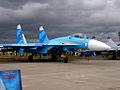 Sukhoi Su-27 (4322158576).jpg